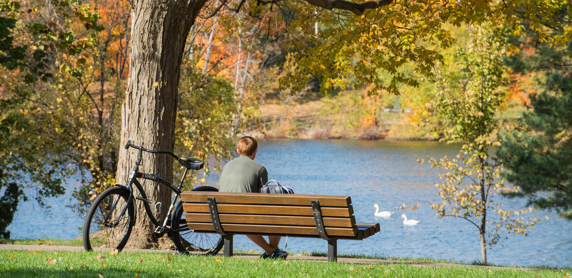 A student on a bench by the lake with a bike in the fall.