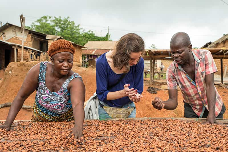 Three people look closely at cocoa pods.